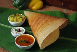 Masala-Dosa | Family Holidays to Asia | Kerala Moments