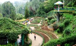 ooty | Package Tours Kerala | Kerala Moments