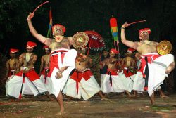 Budget tours of Kerala