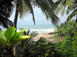 Bespoke tours to kerala